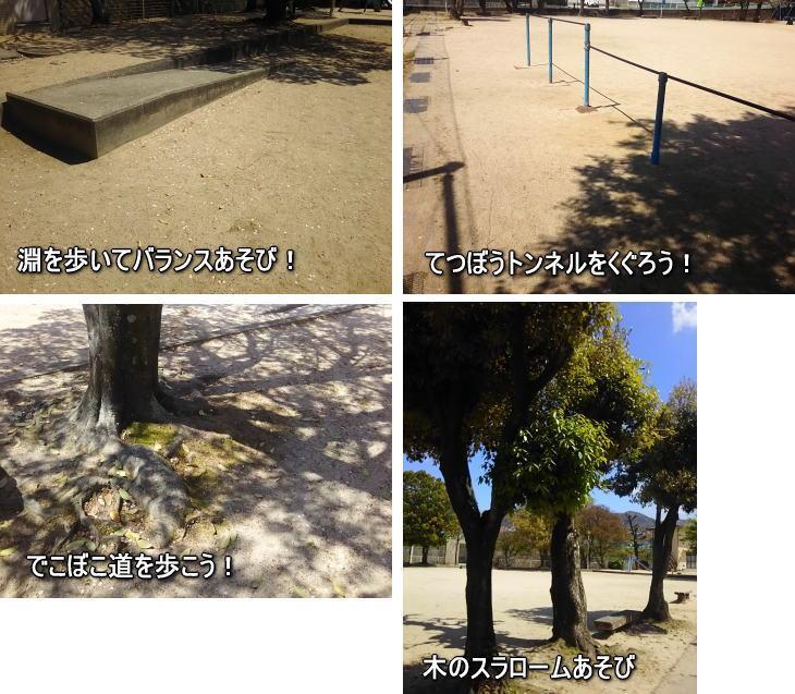 体操教室 公園の資源を活用したあそび