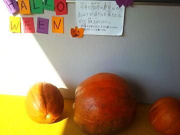 保育園 ハローウィン かぼちゃ